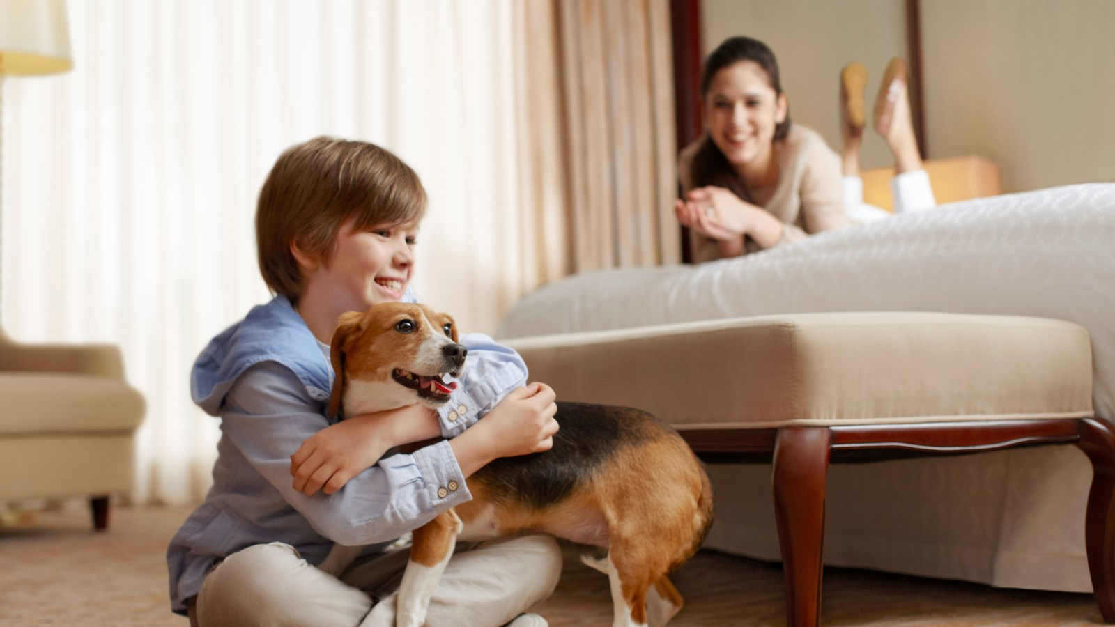 Sheraton Minneapolis West Hotel - Lake Minnetonka Pet Friendly Hotel